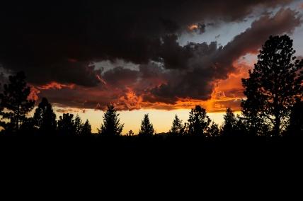 20110722_202535_bertie-martys-lady-lane-cookout-sunset-copy